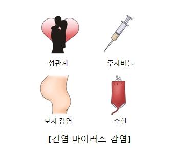 성관계 주사바늘 모자감염 수혈등 간염바이러스 감염의 대한 예시