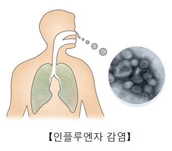 파라인플루엔자바이러스균의현미경사진