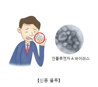 인플루엔자 A바이러스 신종플루의 예시