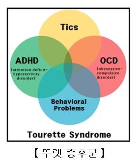 뚜렛증후군의증상-주의력결핍및과잉행동장애.강박장애,학습장애,수면장애,우울증및불안증