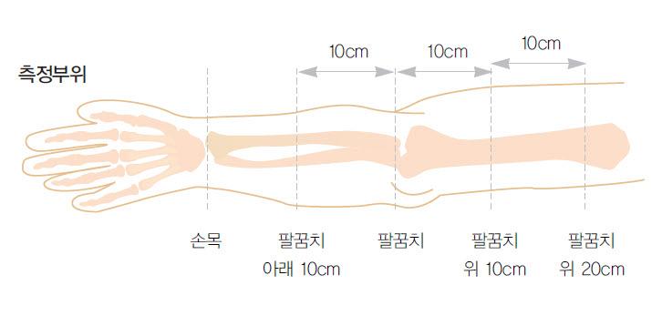 손목 팔꿈치 아래 10cm 팔꿈치 팔꿈치 위 10cm 팔꿈치 위 20cm등 10cm간격의 측정부위를 예시